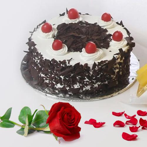 Bakery-Fresh Black Forest Cake and a Fresh Red Rose