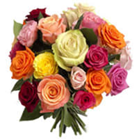 Classic Colorful Two Dozen Mixed Roses with Affection