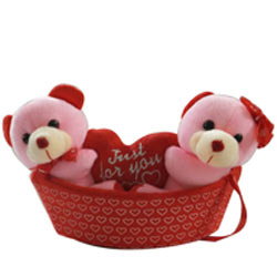 Smart Looking Pair of Teddies In a Boat with Unlimited Fun