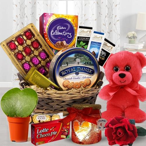 Delicious Chocolate Hamper with Teddy, Lamp N Plant
