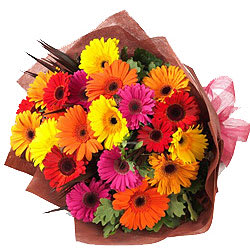Jewel-Toned Present of 15 Multicolored Gerberas Bouquet