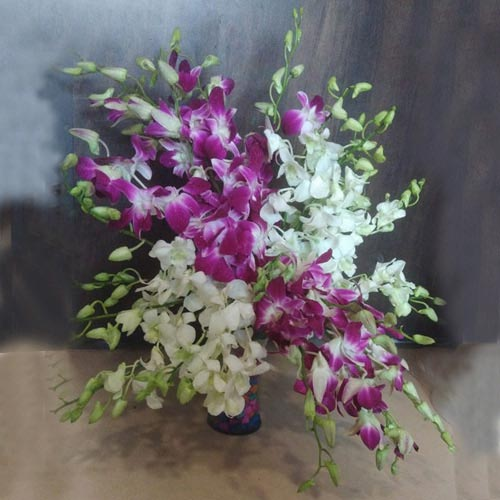 Lovely White N Purple Orchids in Glass Vase