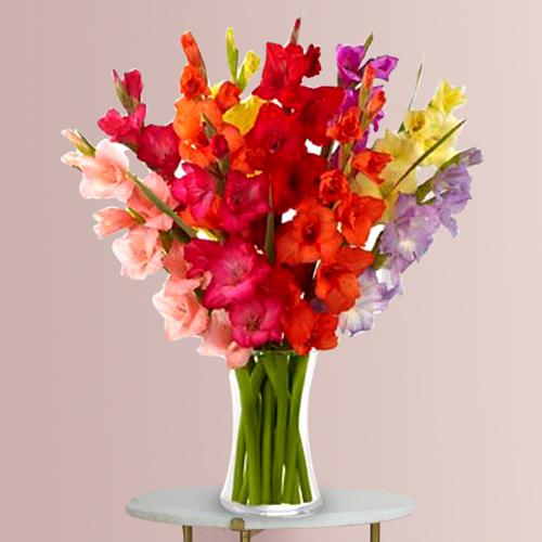 Amazing Assorted Gladiolus in a Glass Vase