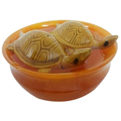 Fengshui Bowl with  Tortoise