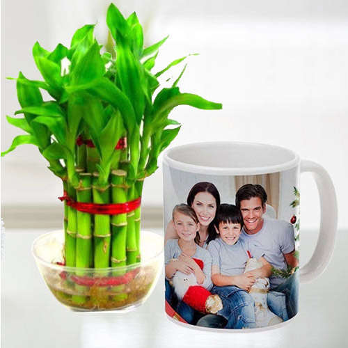 Exclusive Personalized Coffee Mug with Two Tier Bamboo Plant